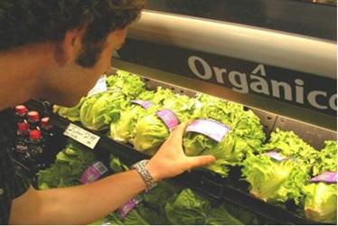 alimentos-organicos