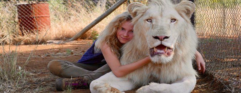 """O amor entre bicho e humano em """"A Menina e o Leão"""""""