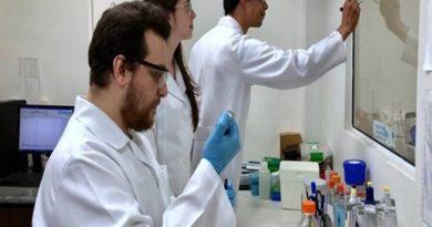 Vírus zika pode deter o câncer de próstata, indica pesquisa da Unicamp