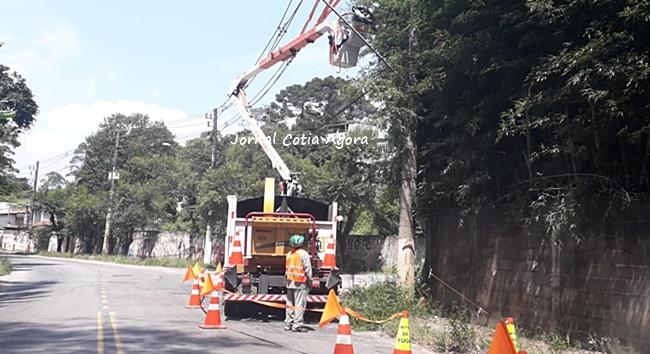 Enel vai fazer poda de árvores e manutenção da rede em Cotia e região até dia 22