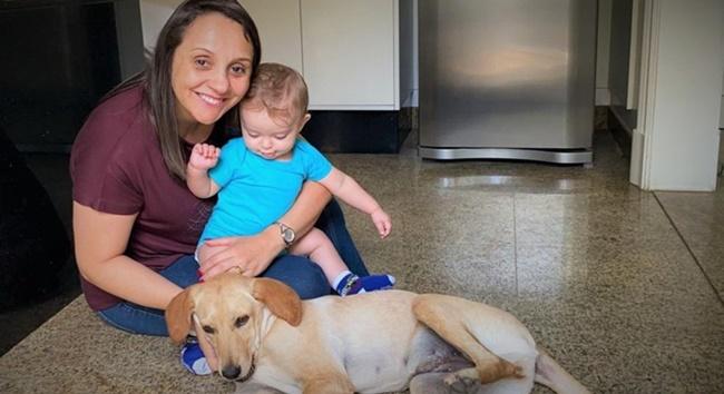 Deputada da região quer criar farmácia veterinária popular
